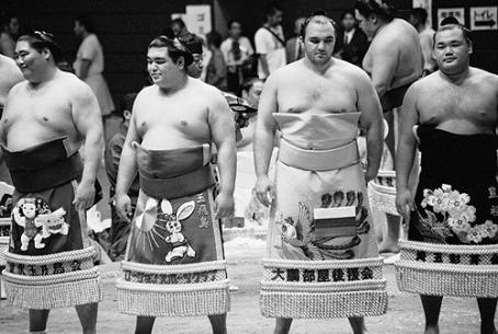 Sumo lineup