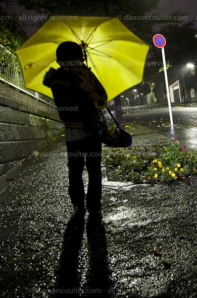 Typhoon hits Tokyo