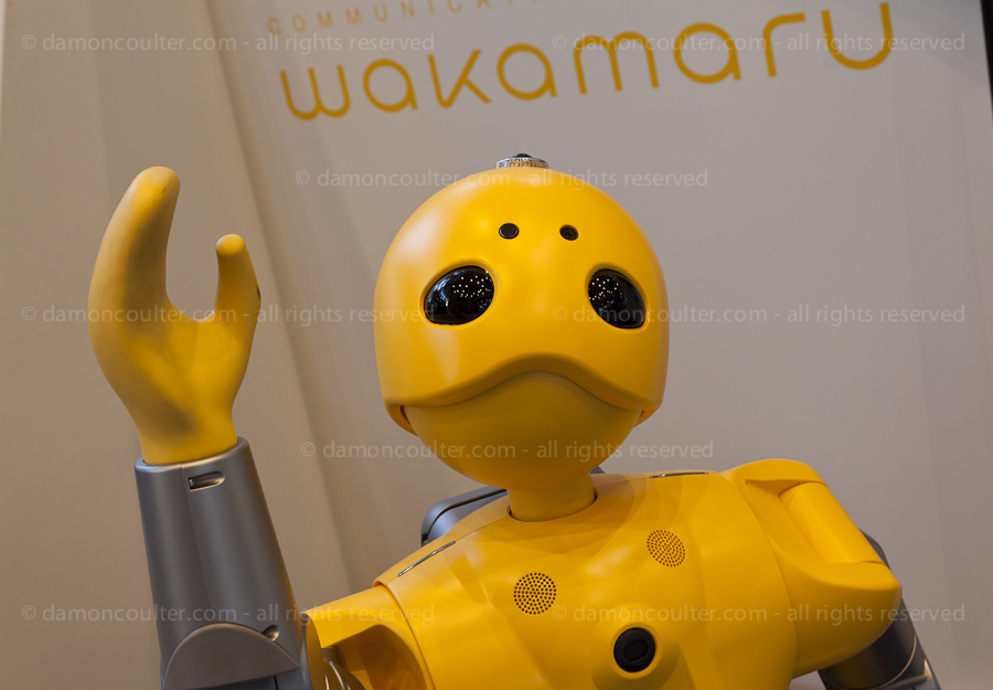 Wakamaru Communications Robot